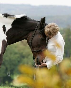 Bild Mensch & Pferd